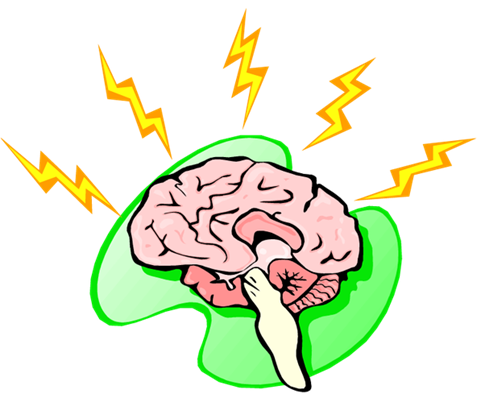 Aniracetam brain characteristics